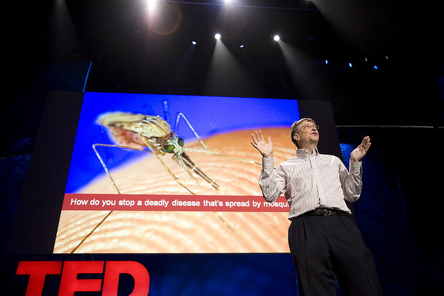 Bill Gates once released mosquitos into the TED theater to make a point about malaria research. Now, he's started Mosquito Week. Photo: James Duncan Davidson