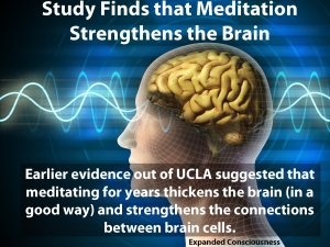 Brain-waves improve from meditation