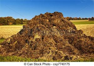 bullshit-pile