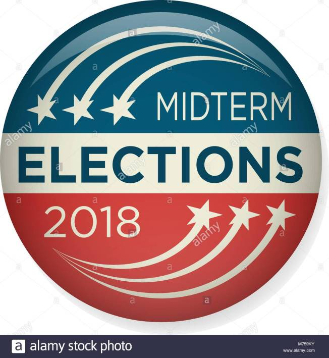retro-midterm-elections-vote-election-pin-button-badge-M759KY (1)