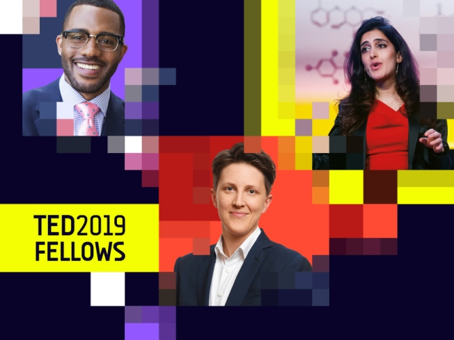 ted2019fellows_blogheader